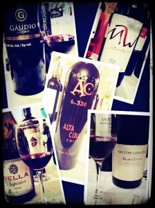 Top 5 Encontro de Vinhos 2014
