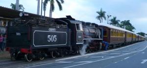 trem-505